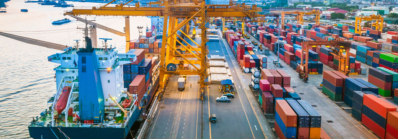 Expect high-quality services from our team to hire shipping rates within your budget.
